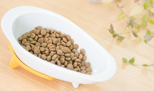 獣医師が解説 穀物不使用(グレインフリー)フードのメリット