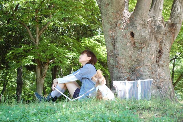 愛犬のトイプードルとピクニック