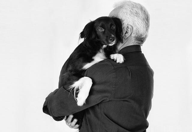愛犬のしつけ初級編抱っこの仕方