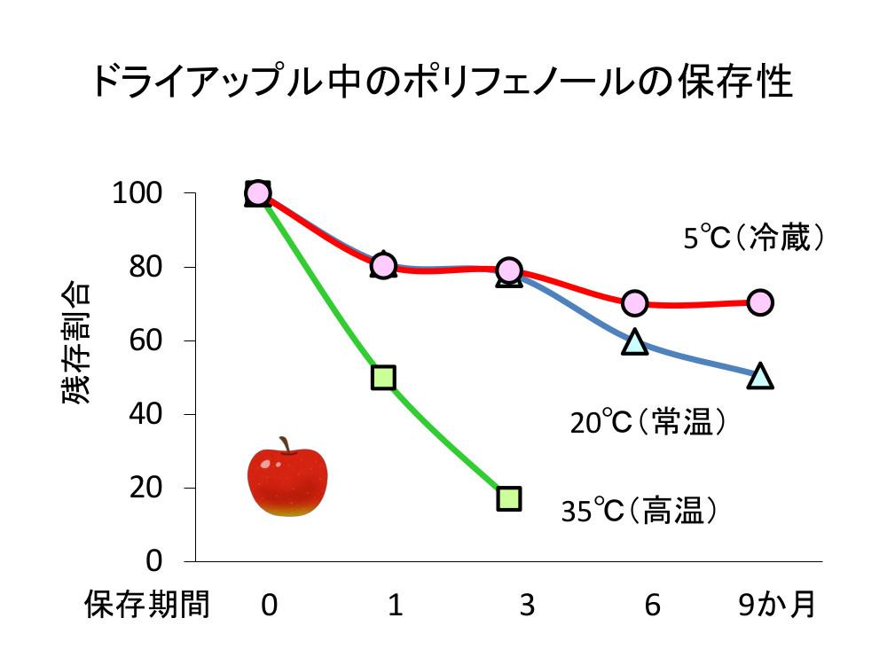 ドライアップル中のポリフェノールの保存性