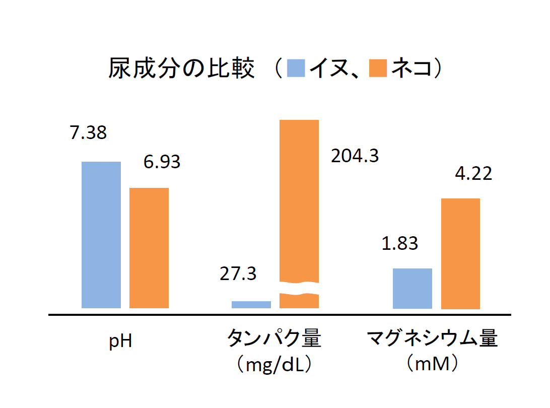 犬と猫の尿成分比較としてタンパク量とマグネシウム量はネコの方がはるかに多いことが判ります